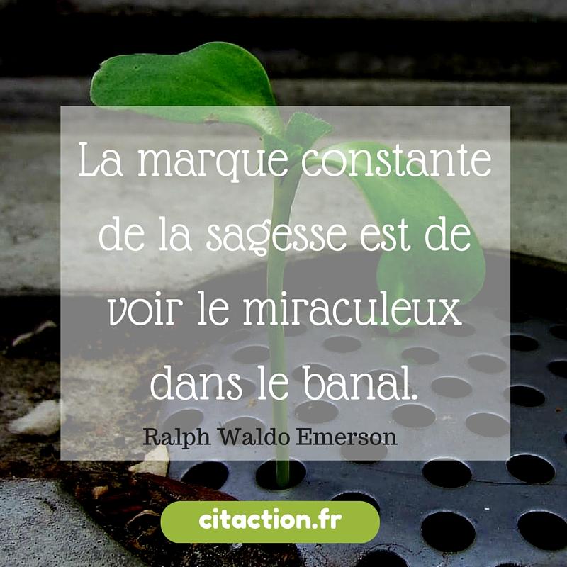La marque constante de la sagesse est de voir le miraculeux dans le banal.