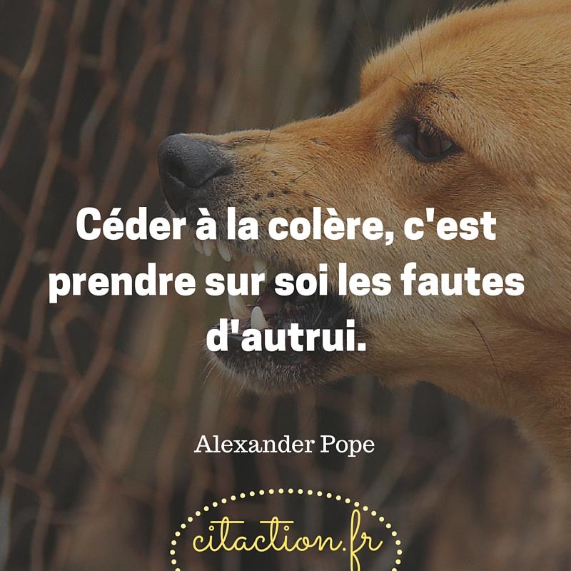 Céder à la colère, c'est prendre sur soi les fautes d'autrui.Alexander Pope