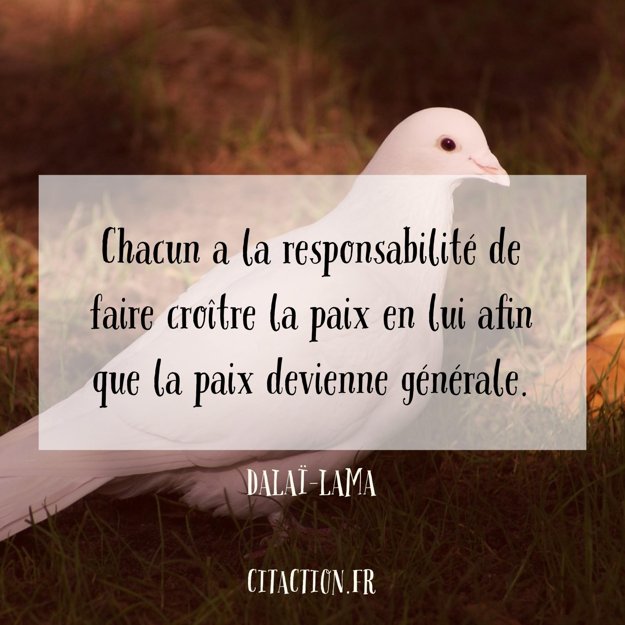 Chacun a la responsabilité de faire croître la paix en lui afin que la paix devienne générale.
