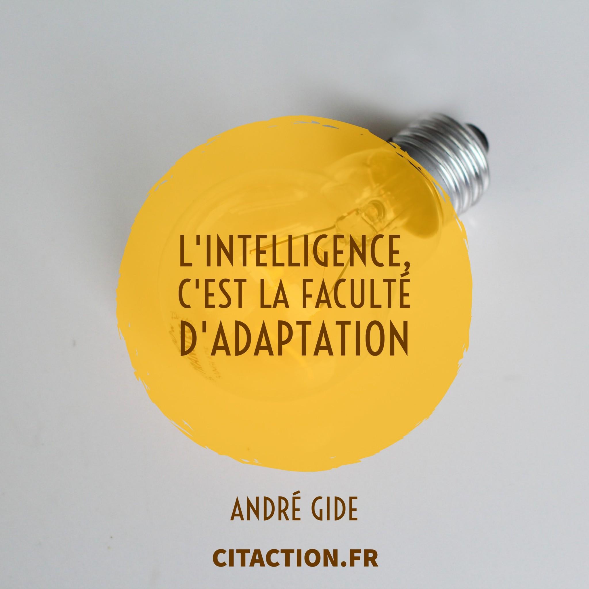 L'intelligence, c'est la faculté d'adaptation